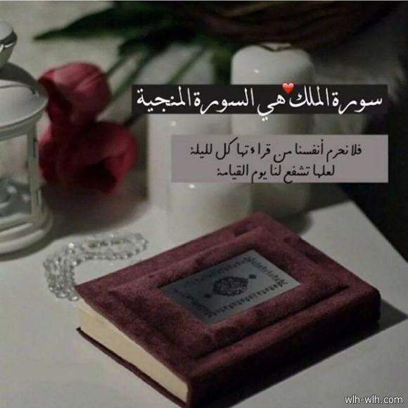 سورة الملك - صحيفة رمز السلام - Newspaper | Noble quran ...