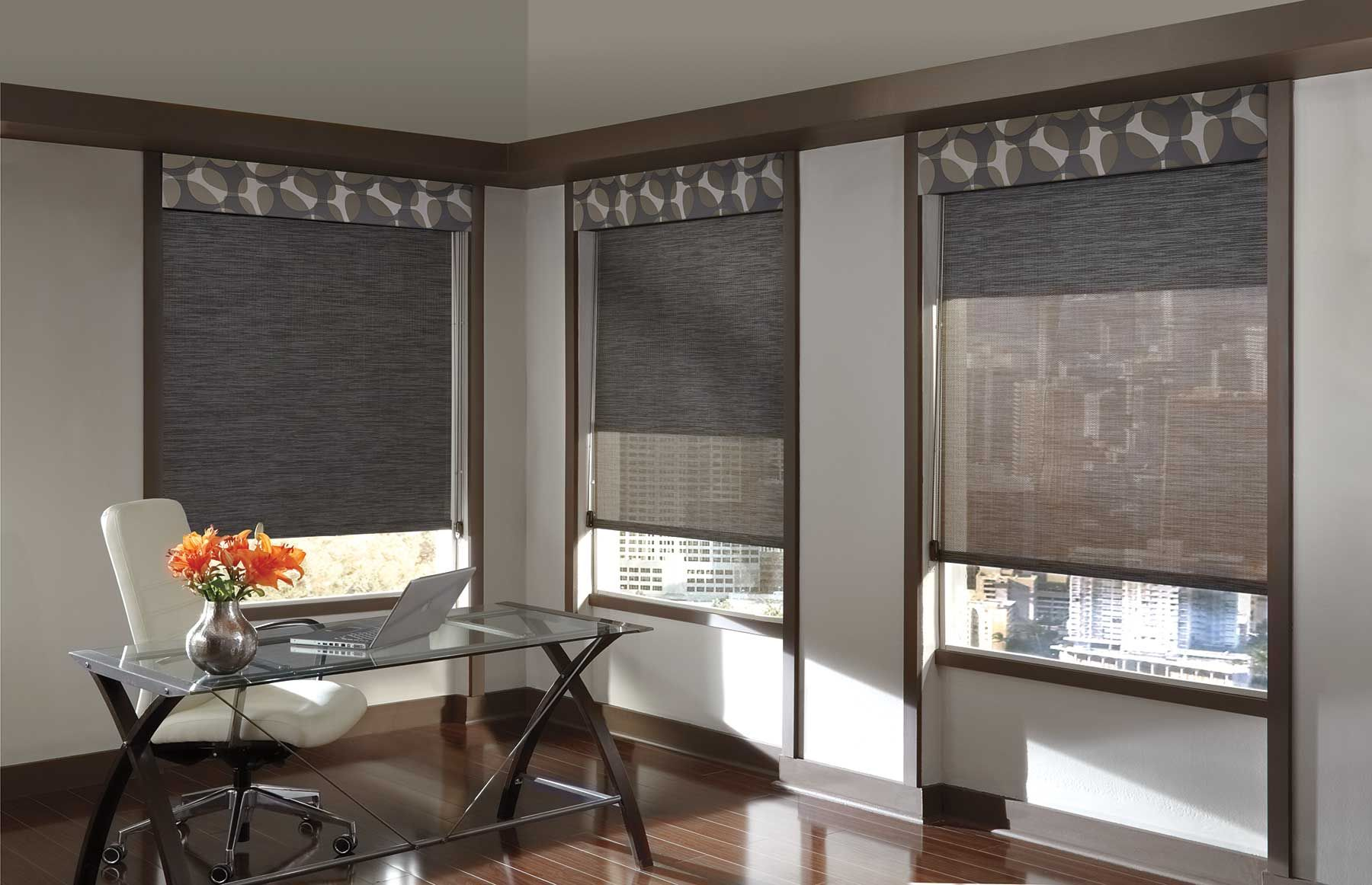 E Screen Blinds Pin By Window Techs On Blinds Window Techs Shades Blinds
