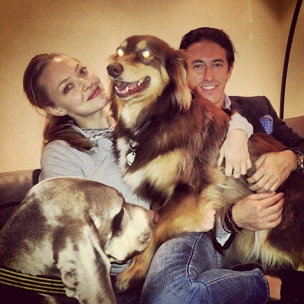 Amanda Seyfried | Amanda seyfried, Amanda, Instagram posts