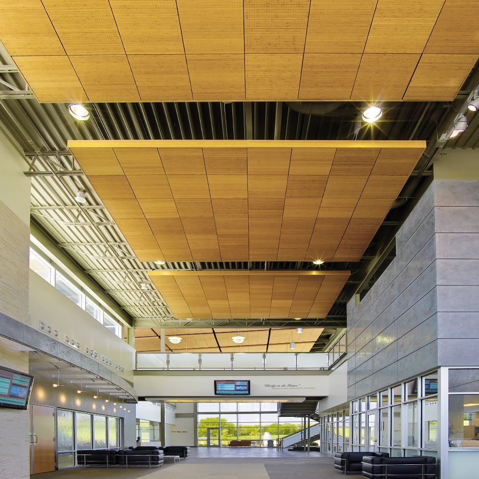 Wood ceilings planks panels armstrong ceiling solutions wood ceilings planks panels armstrong ceiling solutions commercial vector dailygadgetfo Image collections
