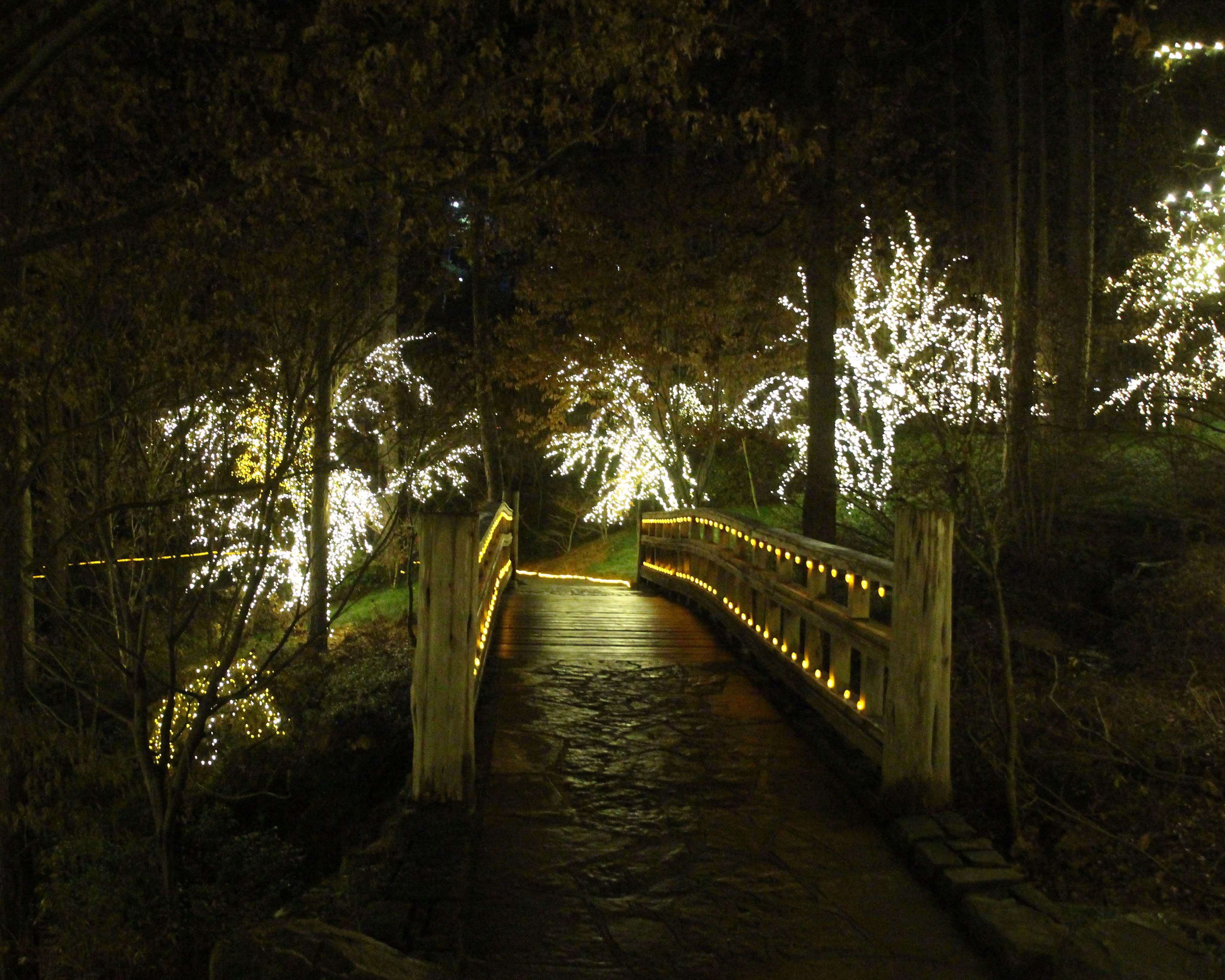 Garvan Gardens Hot Springs Christmas Lights