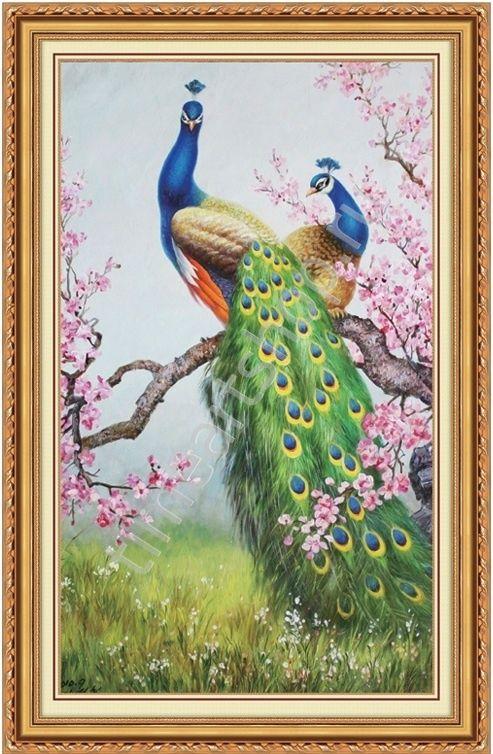 Павлины в цветах сакуры, алмазная мозаика. | Краска ...