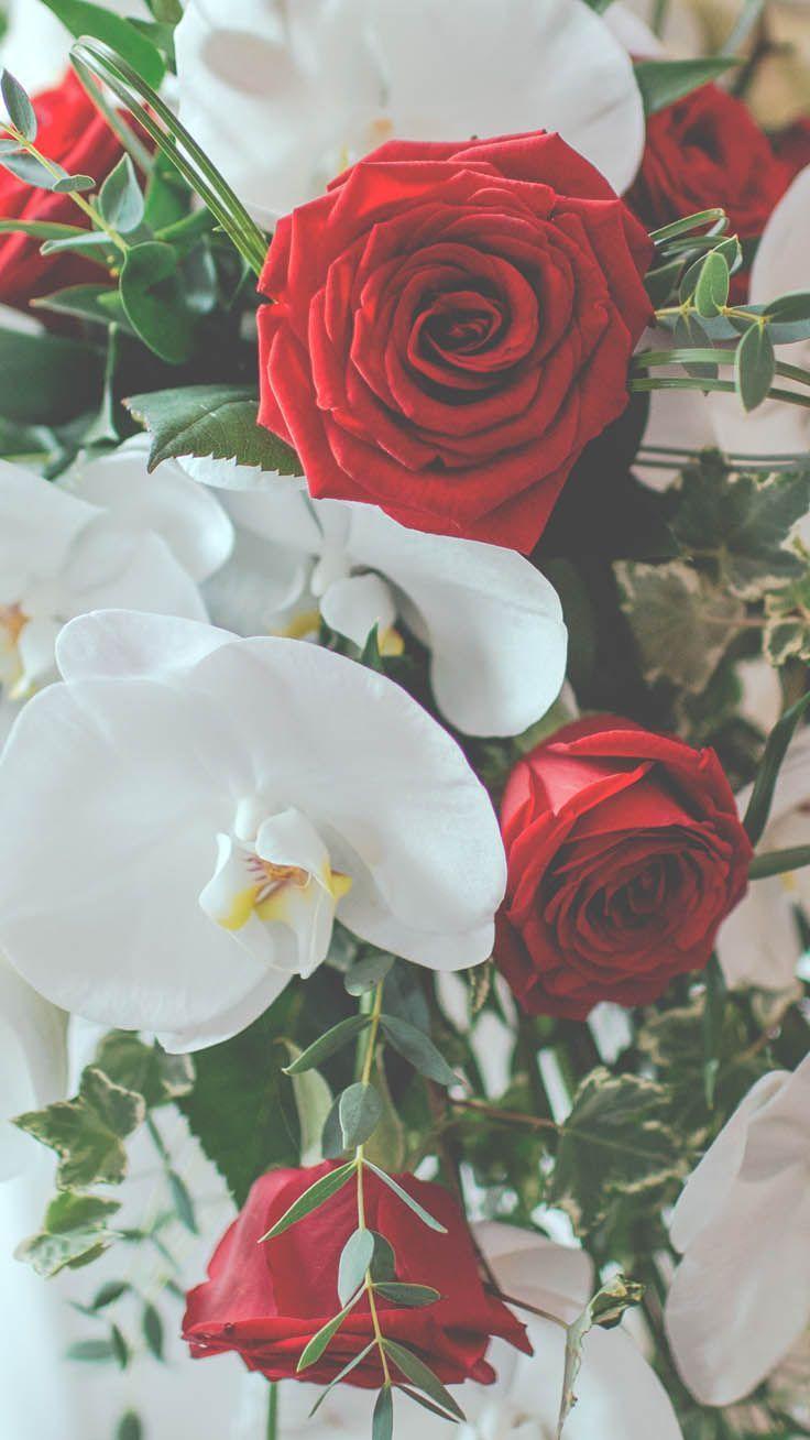 29 Romantic Roses Iphone X Wallpapers Papier Peint Rose Papier Peint A Fleurs Fond D Ecran Iphone Vintage