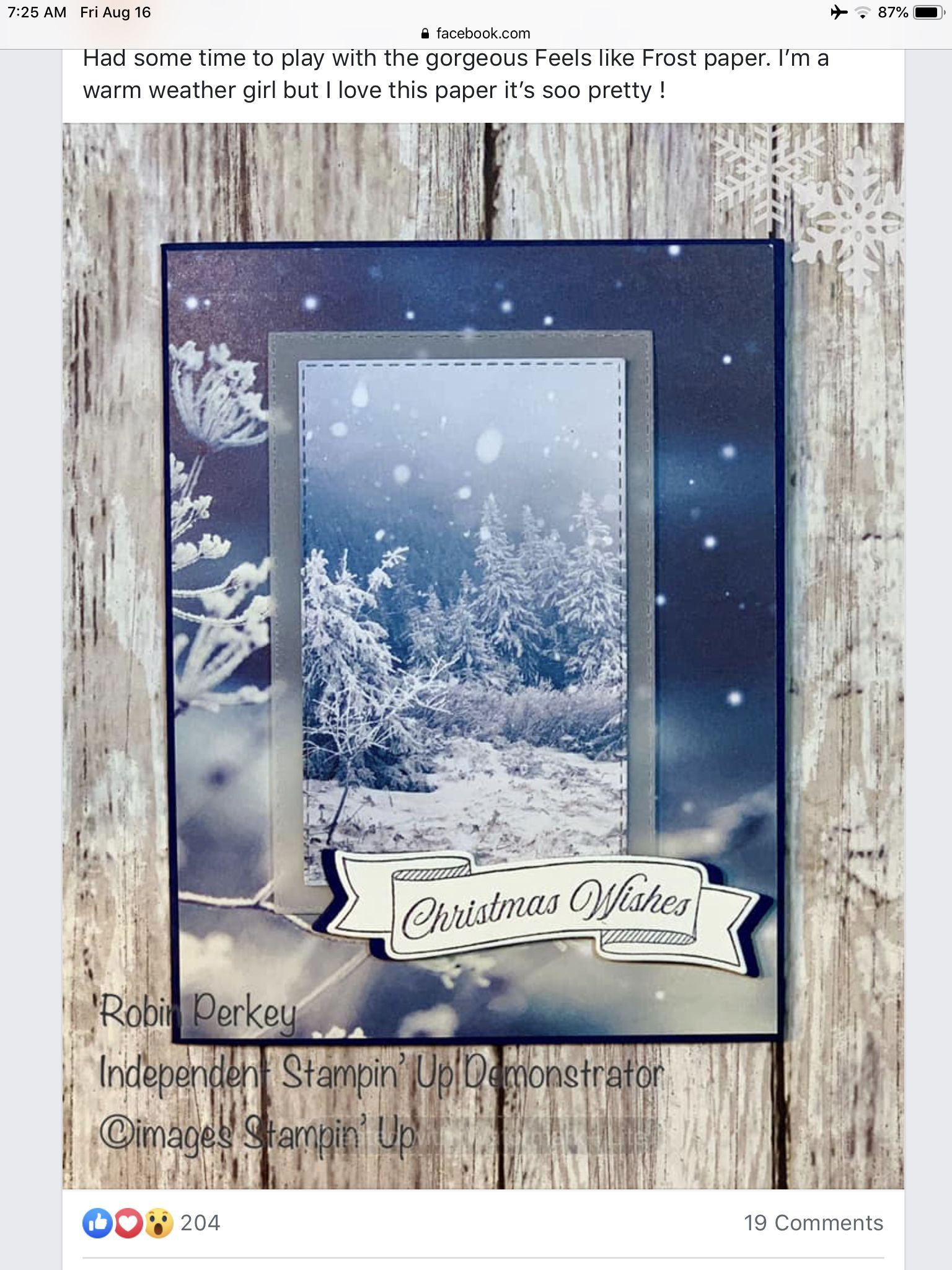 Touch Of Vellum Perfectlyplaidstampinupcards Avec Images