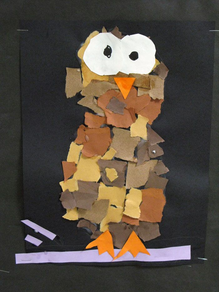 Planning This With Monotype Paper In Rainbow Colors For 1sts And 2nds Owl Templates Elementary