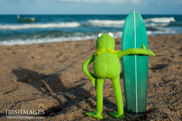 Kermit Old School Surfer