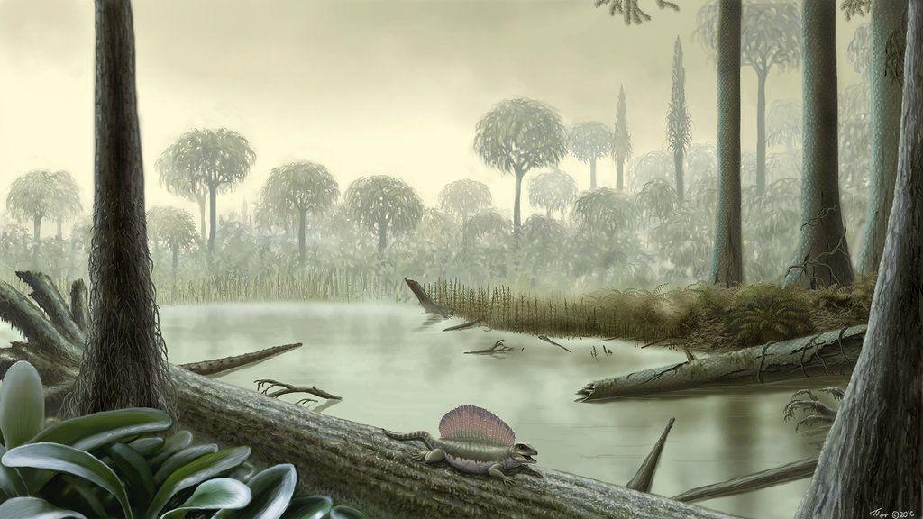 Late Carboniferous Period Forest By Yuriy Priymak Primeval Flora