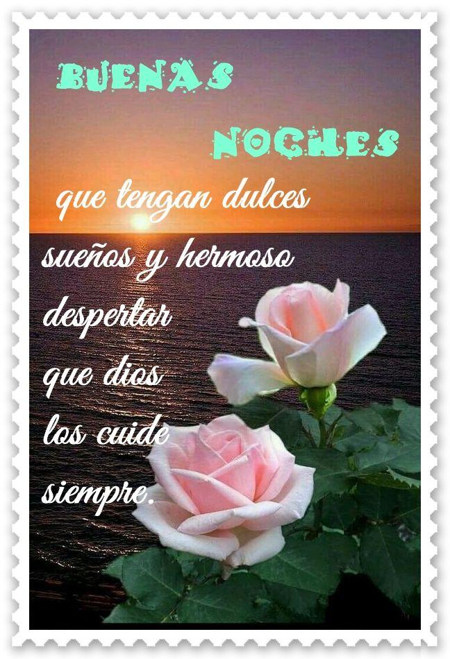 mensaje de buenas noches | Buenas Noches | Flowers, Quotes ...