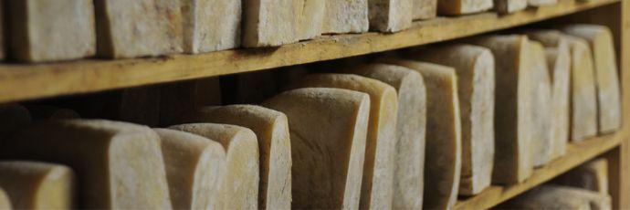 Tome di pecora brigasca - Presìdi  Slow Food #Liguria