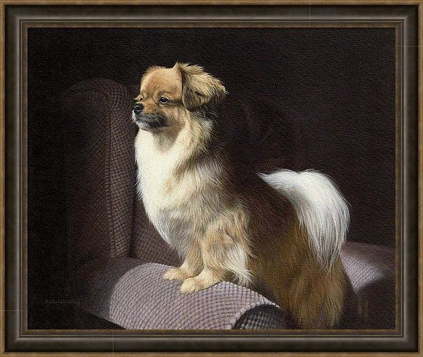 Dog Print featuring the painting Tibetan Spaniel Painting by Rachel Stribbling