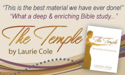 The Leaders of the Womens Bible Cafe Share Their Favorite Bibles | Womens Bible Cafe™