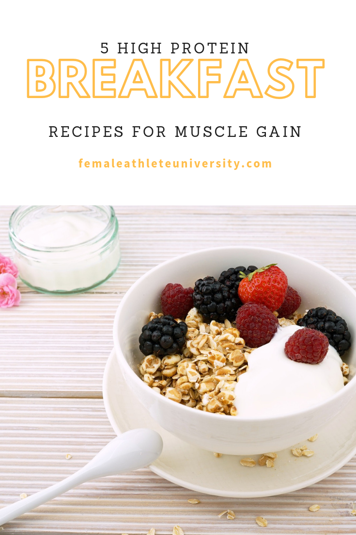 5 High Protein Breakfast Recipes For Muscle Gain Nutrition
