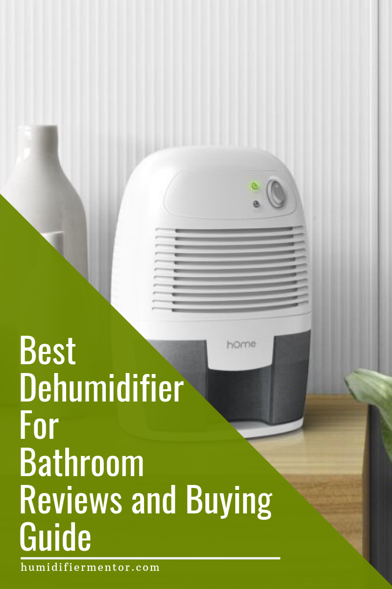 Will a Humidifier or Dehumidifier Help Allergy and Cold