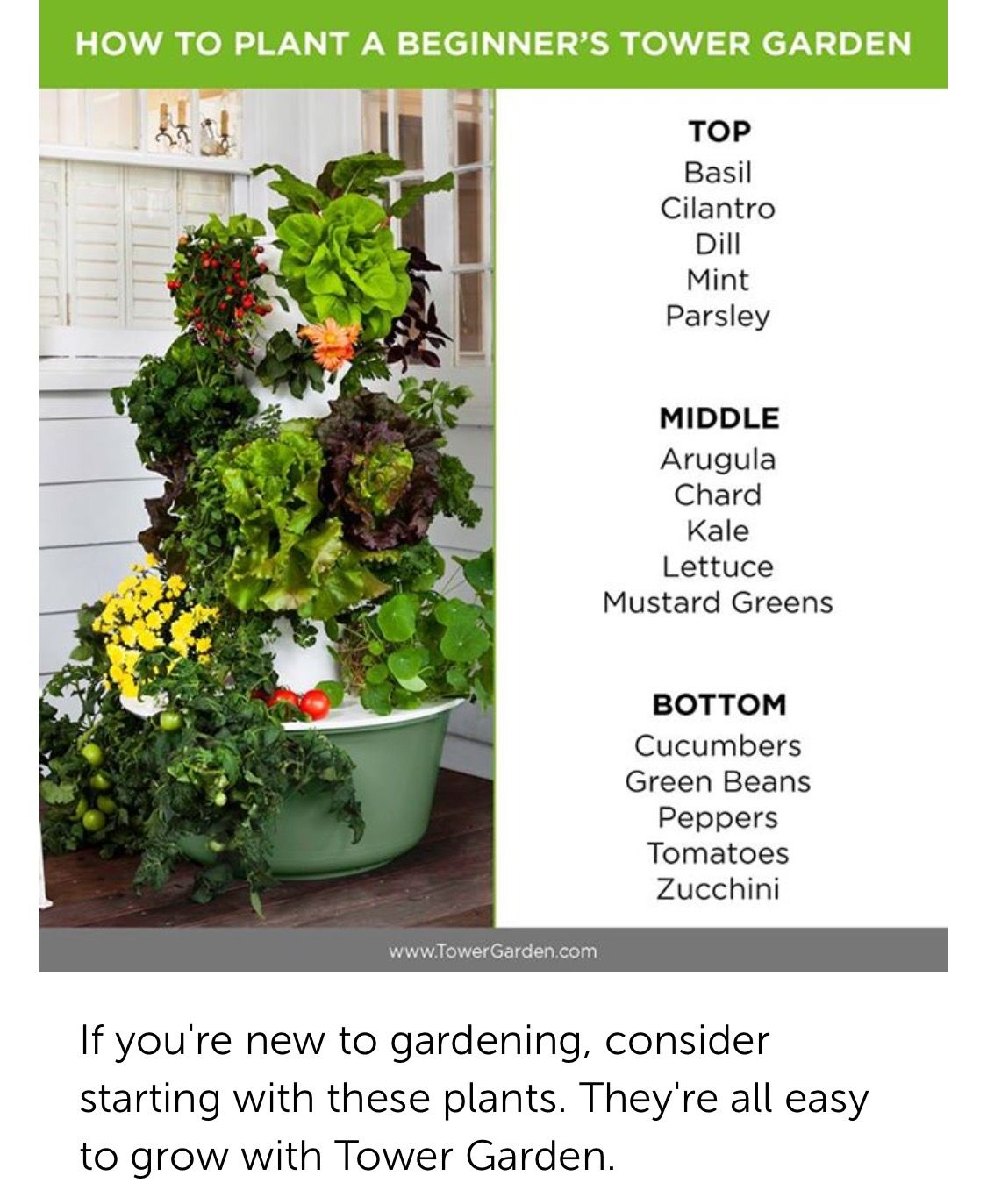 Http Gwales Towergarden Ca Juice Plus Tower Garden Tower Garden Plants