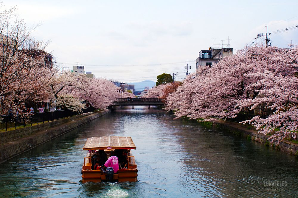 Kyoto 4 by LunaFeles.deviantart.com