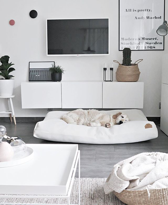 wei es wohnzimmer das liebt auch der hund wohnzimmer einrichtung pinterest wei e. Black Bedroom Furniture Sets. Home Design Ideas