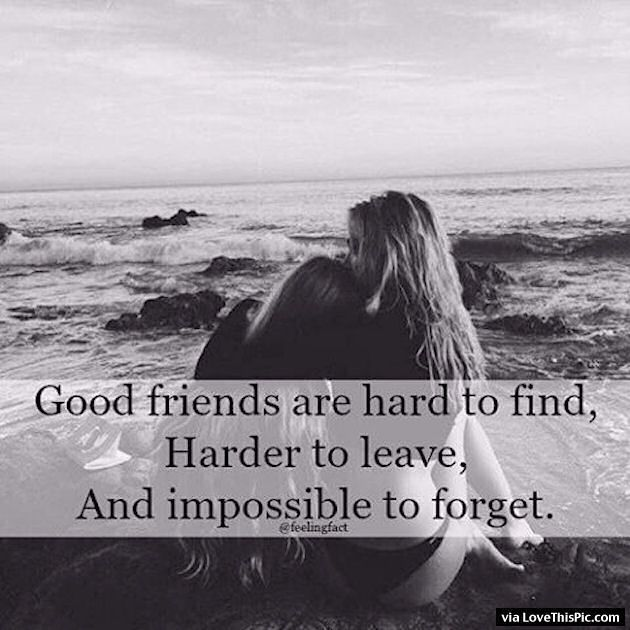 good friends are hard to and impossible to forget life quotes