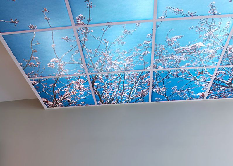 Printed Acoustic Tile For Suspended Ceiling Branches Deco Dal Suspended Ceiling Tiles Suspended Ceiling Acoustic Ceiling Tiles