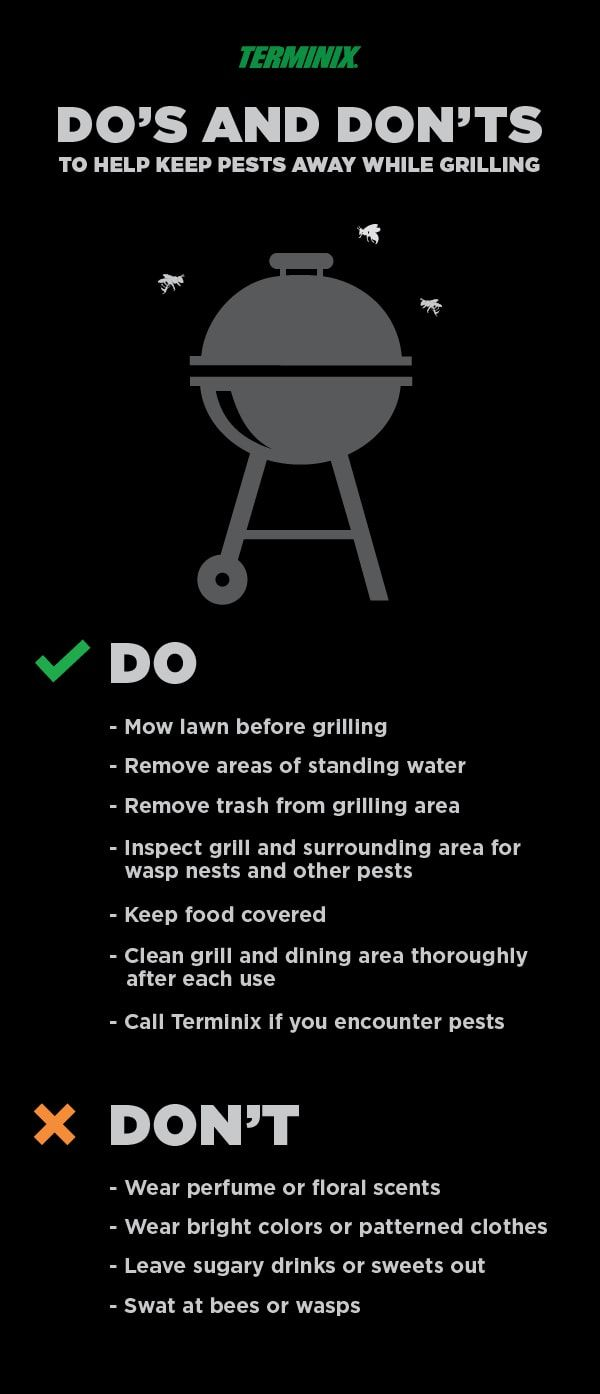 Not Your Normal Bbq Safety Tips Grilling Tips Food Covers Tips