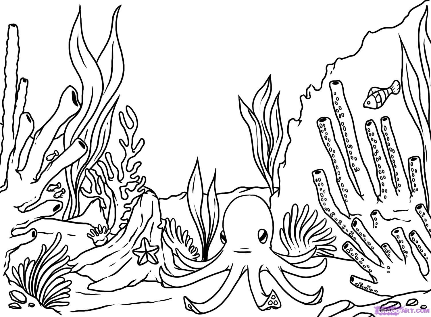 Simple Coral Reef Coloring Pages Coral Reef Drawing Coral Drawing
