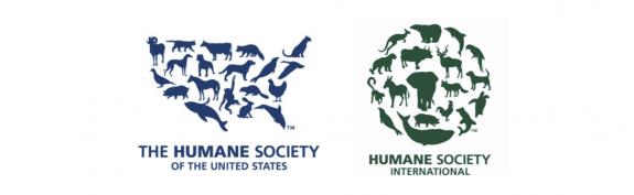 50 Best Nonprofit Logos Charity Logos Logo Design Branding Graphics Humane Society Logo