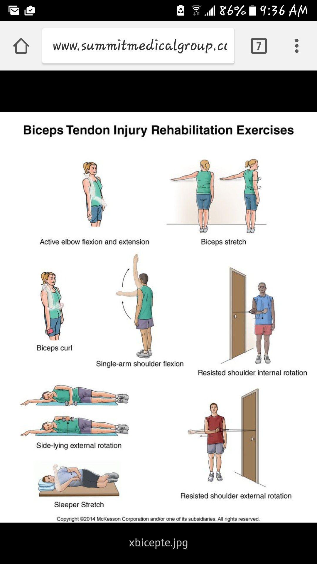 Exercises for bicep tendonitis | Bicep tendonitis ...