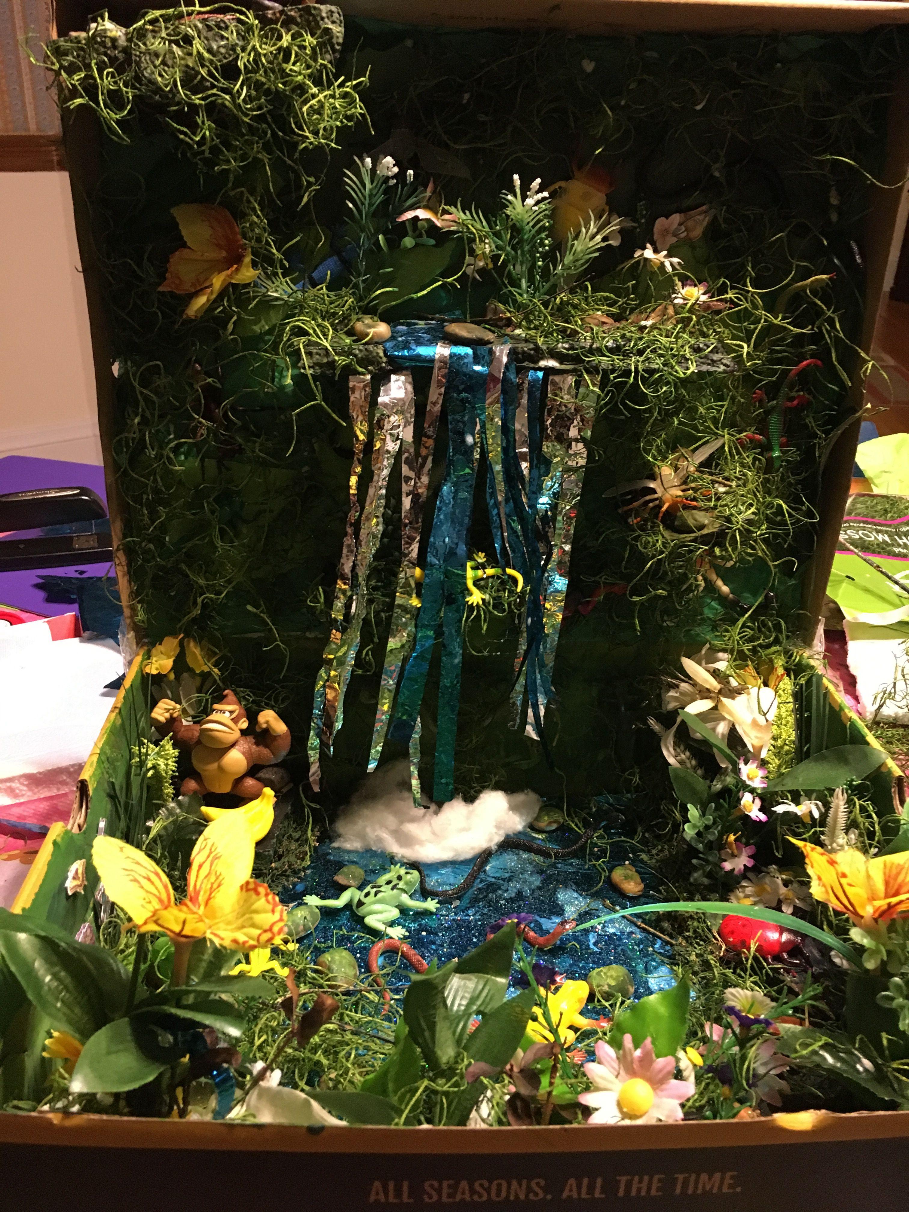 Rainforest diorama in a shoebox | School projects