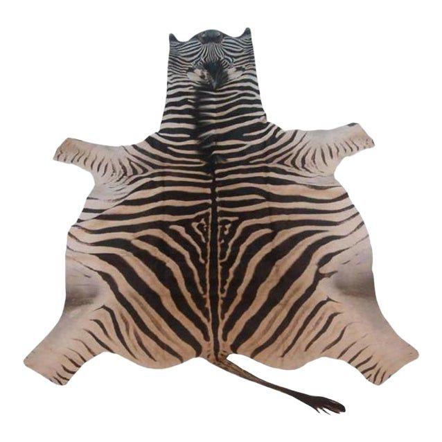 Vintage Zebra Skin Rug Zebra Skin Rug Rugs Vintage