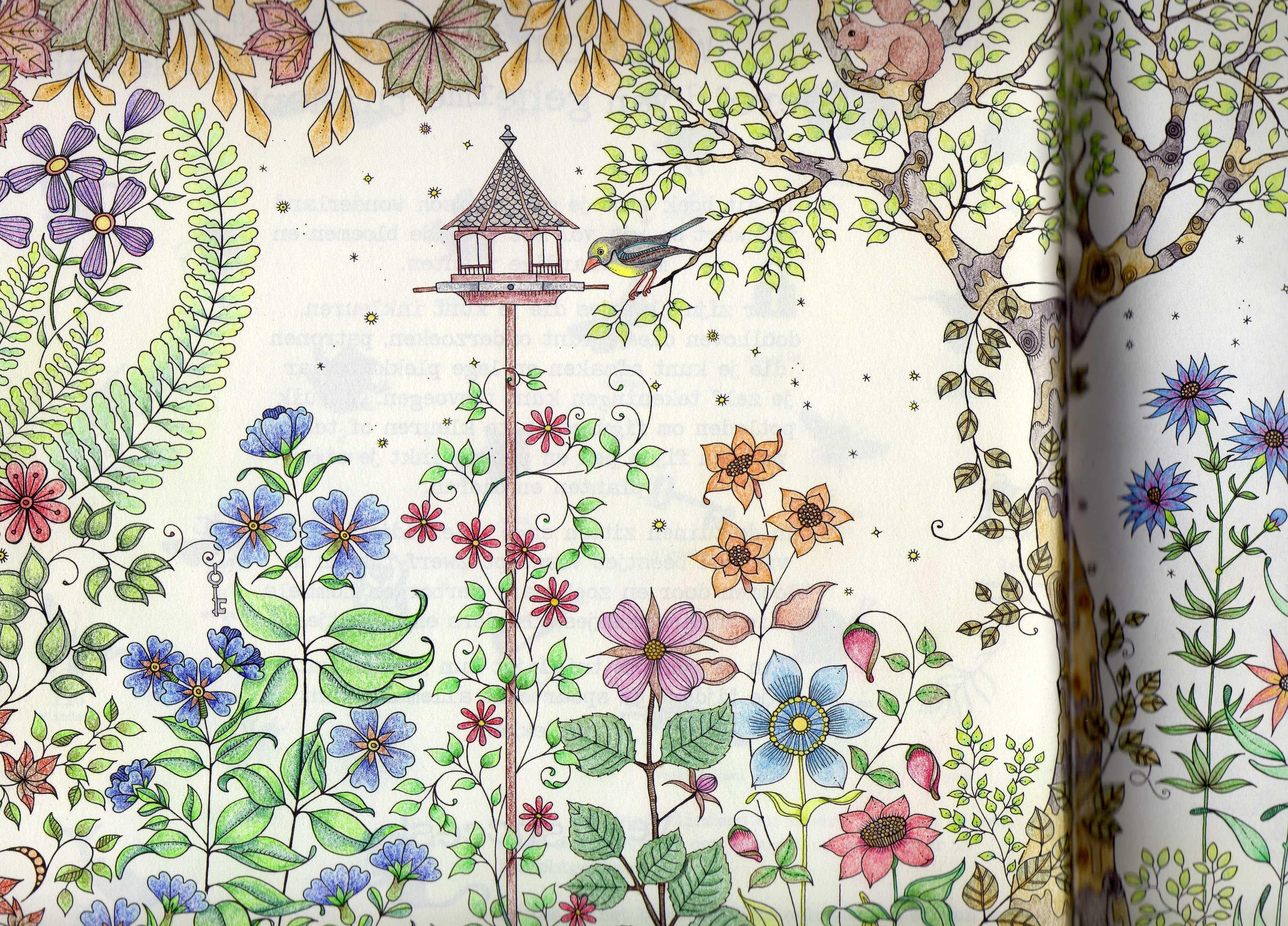 Uit Het Kleurboek Mijn Geheime Tuin Van Johanna Basford De Eerste Bladzijde Wordt Vervolgd Mandala Kleurplaten Geheime Tuin Kleurboek