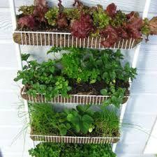 Resultado de imagen para regaderas para jardin hechas en casa