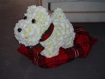 Dog Flower Unique Arrangements