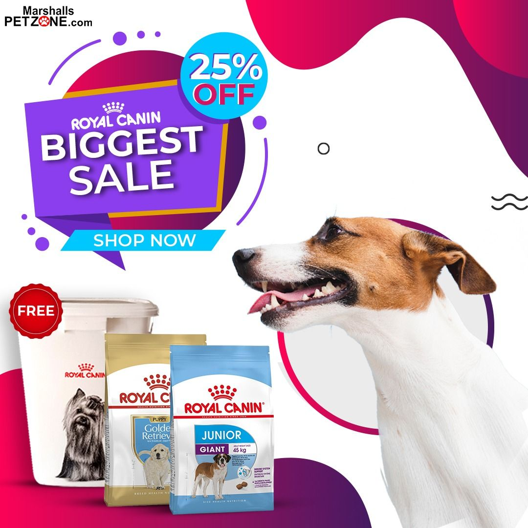 Royal Canin Giant Junior 15kg Near Expiry Clearance Sale