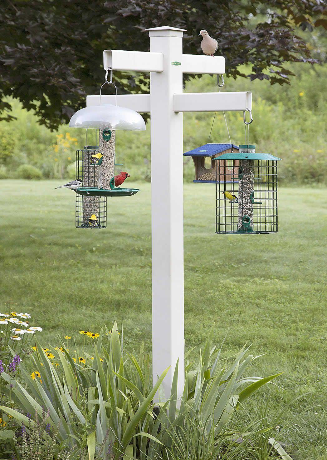 dp uk fort bird duty gardman proof amazon squirrel seed co heavy wild feeder pole steel outdoors garden