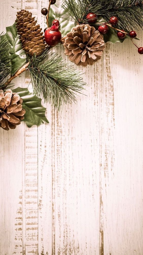 are you looking for ideas for christmas treesbrowse