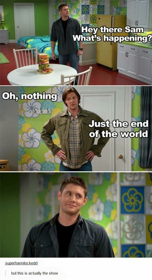 Somebody Animate Every Episode Of Supernatural To Be Just As Happy