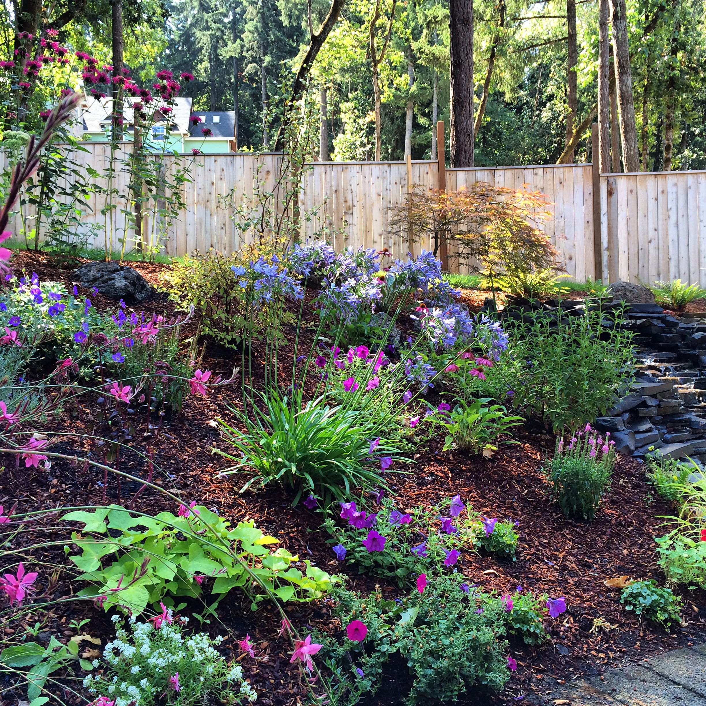 image result for pacific northwest purple garden | exterior