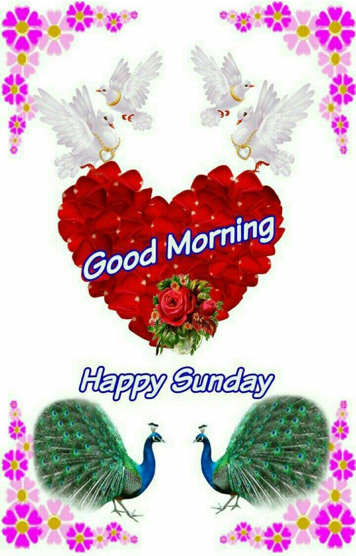 Good Morning Sunday Good Morning Wishes Pinterest Morning