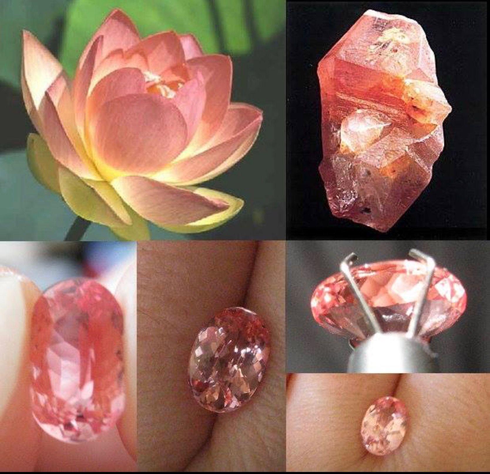 Padparadscha sapphire gemmy gemstones pinterest jewelry