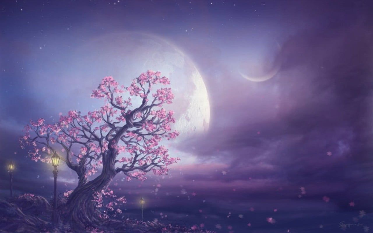 Pink Moon Fantasy Art Cherry Blossoms Painting Art And Creative Tree Art Moon Painting 720p Fairy Wallpaper Cherry Blossom Painting Pink Moon Wallpaper