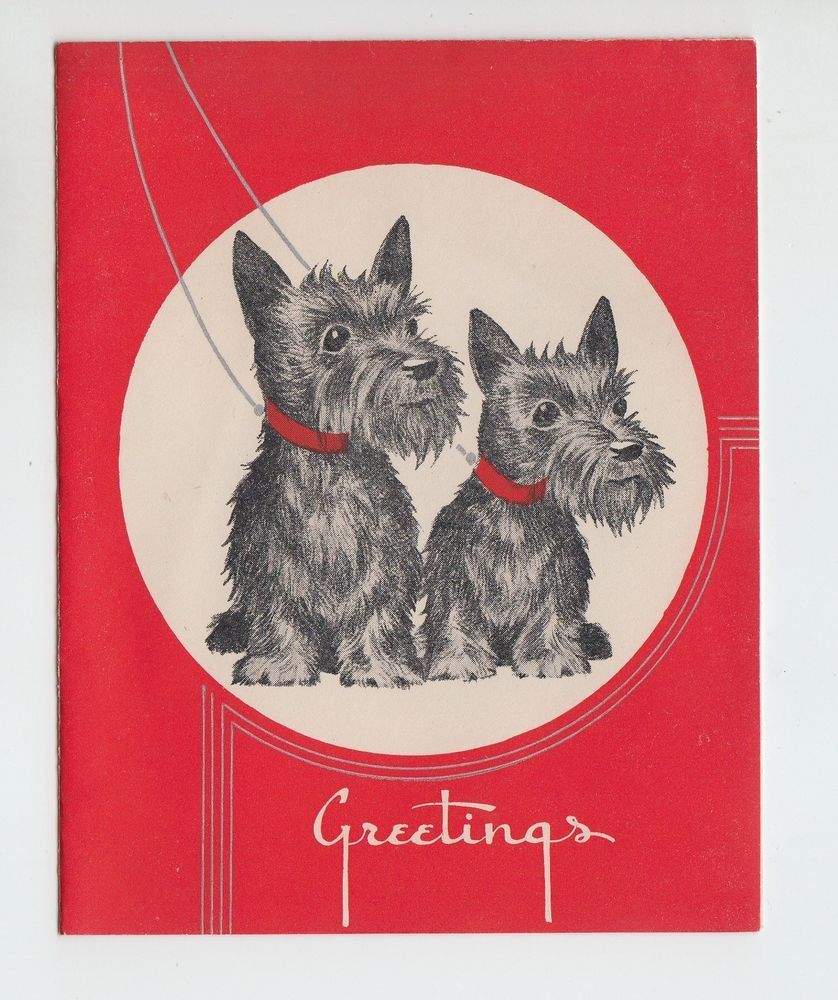 Vintage Two Scottie Dogs Christmas Greeting Card Everything Scotty