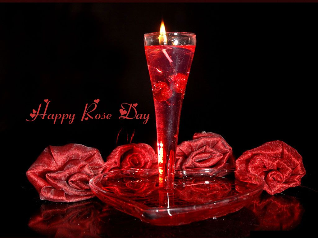 Hd wallpaper rose - Happy Rose Day 2015 High Quality 4k Wallpapers Http Wallucky Com