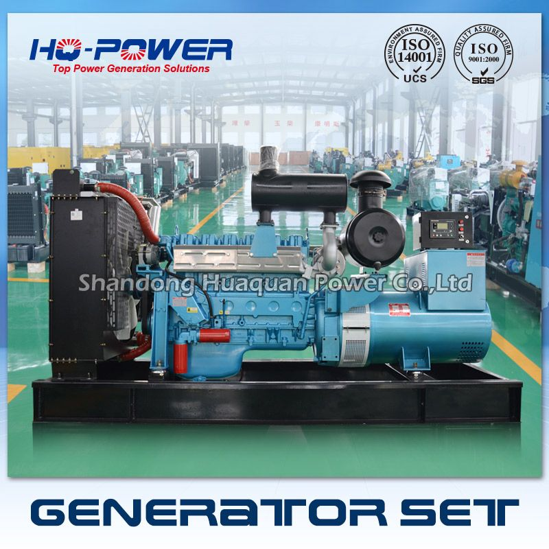 Factory Sale Water Cooled 380v 50hz Ricardo 300kw Diesel Generator Diesel Generators Generation Alternator