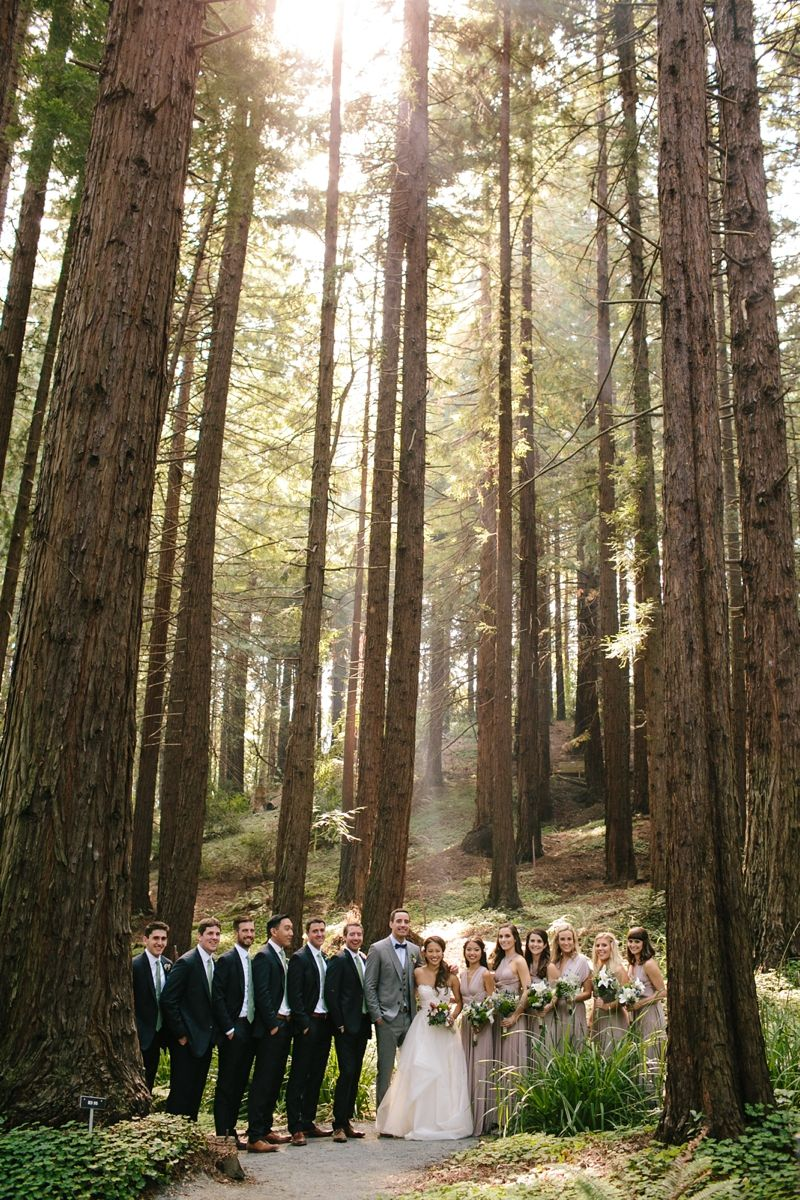 Janie and Cooper\'s Incredible UC Berkeley Botanical Garden wedding ...