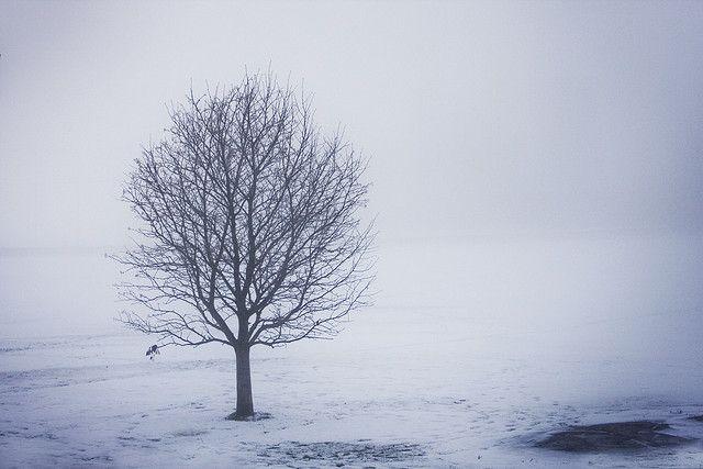 vinterstemning by MELK & BANANER, via Flickr