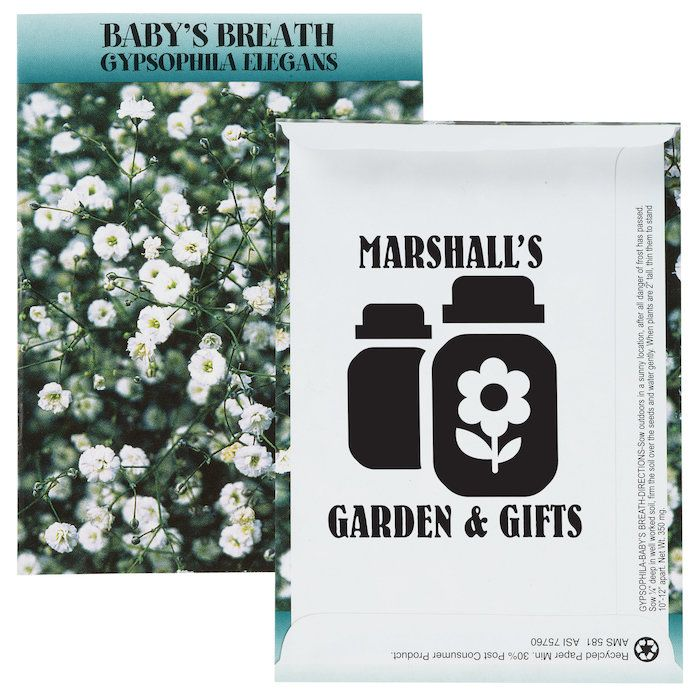 Boost Your Brand With This Custom Baby S Breath Packet Seed Packets Grow Kit Babys Breath