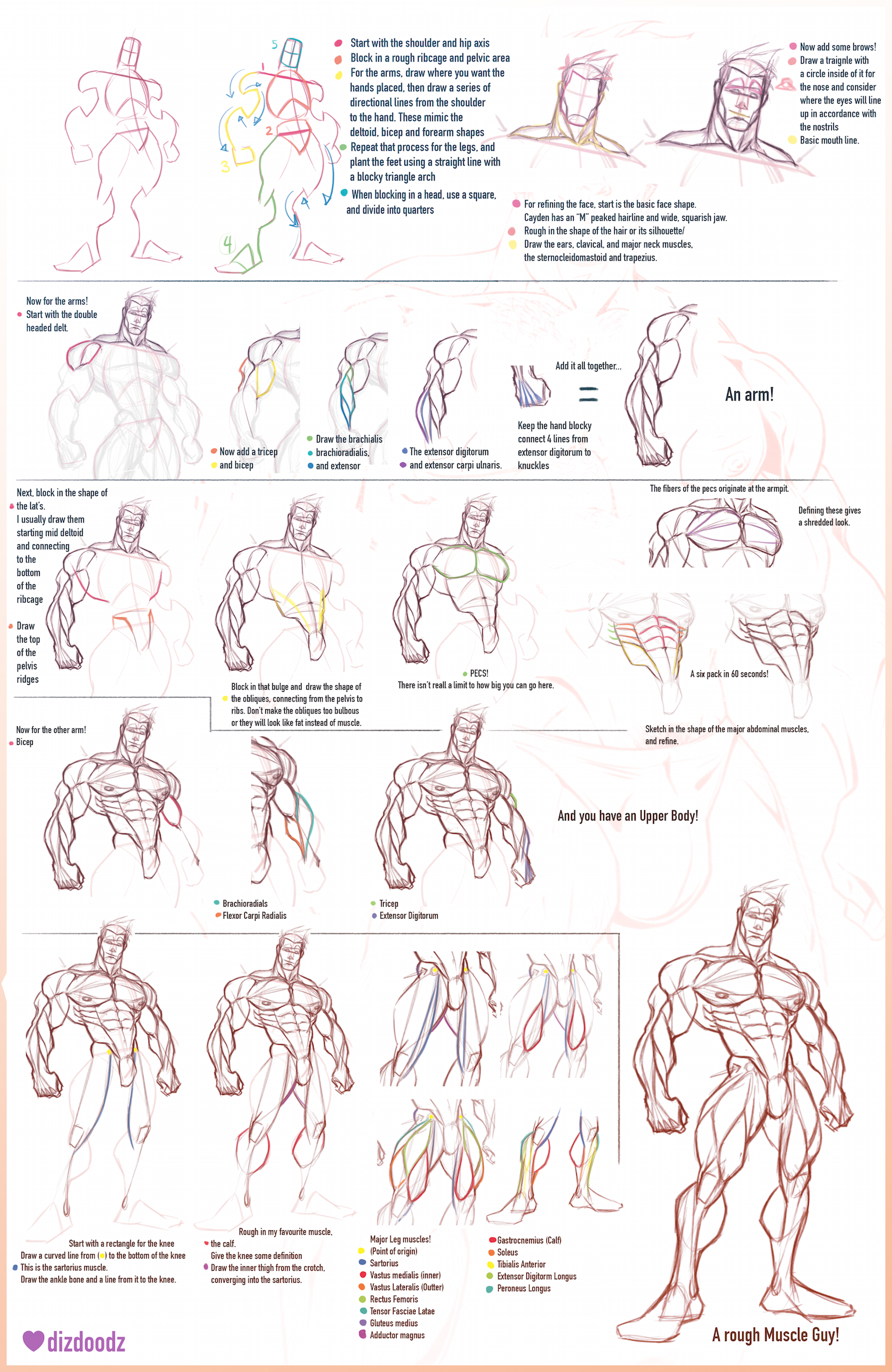 How to Draw Cayden and Male Anatomy Tutorial by dizdoodz | 2D Muscle ...
