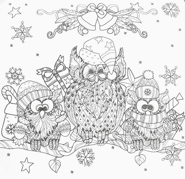 Winter owls adult coloring page | Imprimibles | Pinterest | Adult ...