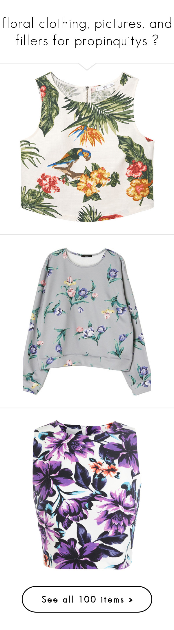 """floral clothing, pictures, and fillers for propinquitys ♡"" by adal1ne ❤ liked on Polyvore featuring tops, crop tops, shirts, blusas, zipper crop top, zip top, zipper top, zip crop top, mango shirts and sweaters"