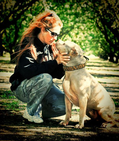 Tia Torres Of Animal Planet S Pit Bulls And Parolees Pit Bulls Parolees Pitbull Terrier Animal Planet