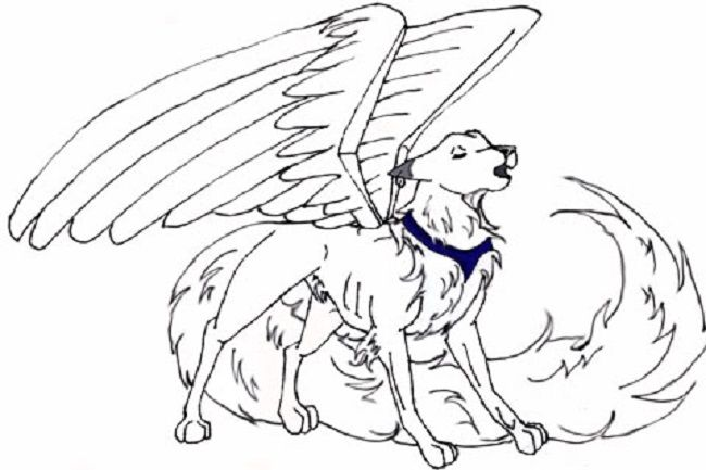 Anime Angel Wolf Coloring Pages